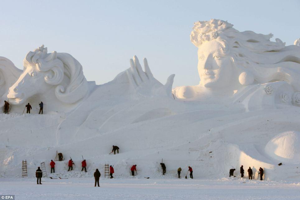 Harbin 10